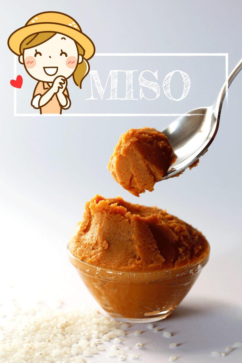 Miso Paste Titelbild