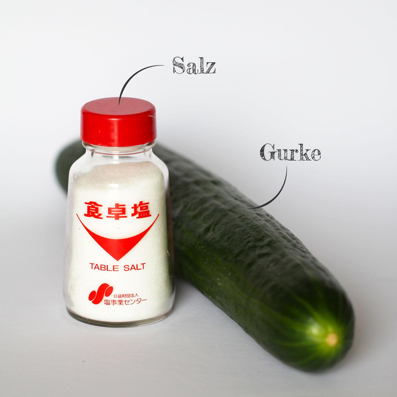Shiozuke Zutaten